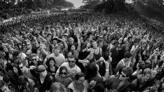 Социальное поведение: основное понятие и принципы