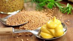 Как использовать горчицу для похудения