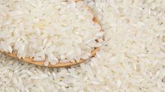 Рис: вред и польза