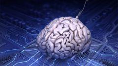 Что такое когнитивность человека