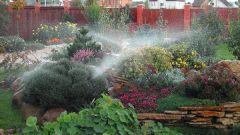 Как использовать в саду форсунку для распыления воды