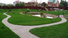 Использование газонной травы в ландшафте