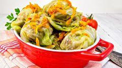 Рецепты блюд из капусты: голубцы