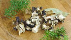 Рецепты приготовления супа из сухих грибов