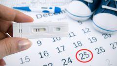 Как рассчитать дату родов по дате зачатия