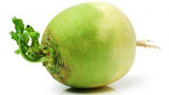 Насыщаем организм витаминами с салатом из зеленой редьки