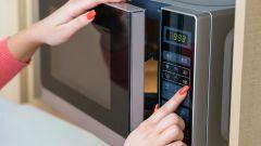 Какая печь лучше - микроволновая или электрическая с конвекцией? Отзывы