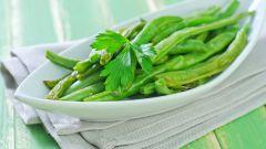 Рецепты блюд из стручковой фасоли