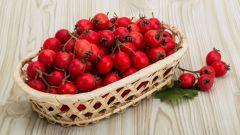Боярка: целебная ягода с удивительными свойствами