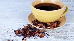 Как заваривать Диктамус? Полезные свойства критского горного чая