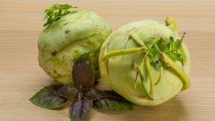 Капуста кольраби. Польза, вред и пищевая ценность пикантного овоща
