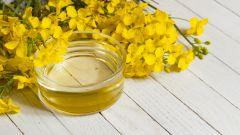 Полезные и вредные свойства рапсового масла