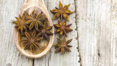 Солодка, или лакричник: польза и вред сладкого корня