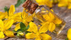 Соства масла травы зверобой. Его целебные свойства