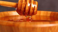 Целебный мед диких пчел. Эффекты, применение