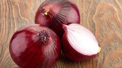 Чем полезен красный лук. Не принесет ли вреда организму его применение