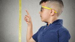 Чем нужно питаться, если хочешь подрасти на 20 см