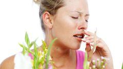 Аллергический дерматит – причины и способы лечения