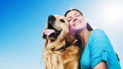 С собакой - в мир удивительных открытий!