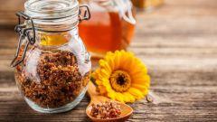 Прополис - универсальное лекарство, которое делают пчелы