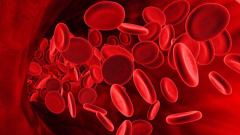 How to raise hemoglobin levels without medication