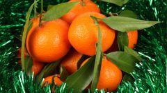 Какие эфирные масла помогают создать новогоднее настроение