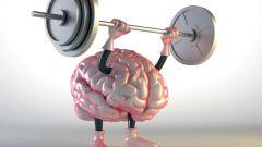 Как заставить мозг работать на 100% в разных ситуациях
