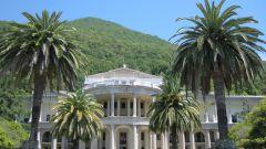 Что стоит попробовать во время поездки в Абхазию