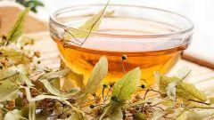 Липовый чай: состав и полезные свойства