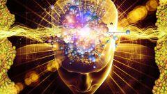 Какие продукты стимулируют мозговую активность