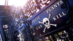 Сады Алнвик - опасная экскурсия