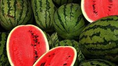 How to grow watermelon in your own garden