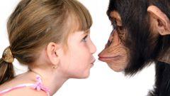 Шокирующие данные об эволюции человека