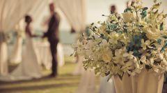 Как сделать свадебную церемонию незабываемой: 10 важных мелочей