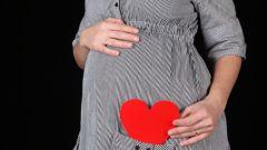Основы питания будущей мамы