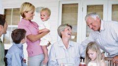 Семья -  как живой организм