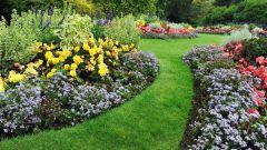 Садовая дорожка своими руками: выбираем материал