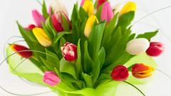 Как дольше сохранить тюльпаны в вазе