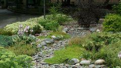 Как сделать на садовом участке сухой ручей