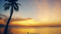 Остров Самуи - инструкция по применению