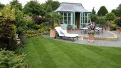 Как вырастить красивый долговечный газон