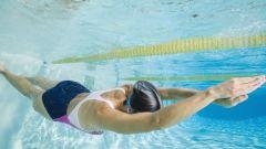 Как плавать в бассейне, чтобы худеть