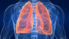 Как лечить астму с помощью трав
