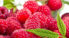Recipe for raspberry wine