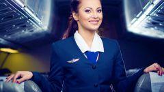 Каковы критерии отбора стюардесс