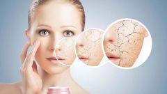Как устроена кожа и причины гнойничковых заболеваний