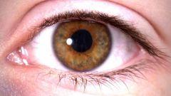 Как улучшить зрение без врачей и лекарств