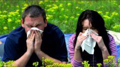 Аллергия: симптомы, лечение, причины