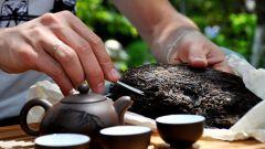 Секреты правильной заварки чая пуэр