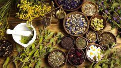 Чудодейственная сила травяных чаев